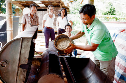 Roasting process – Taste the Lao Coffee